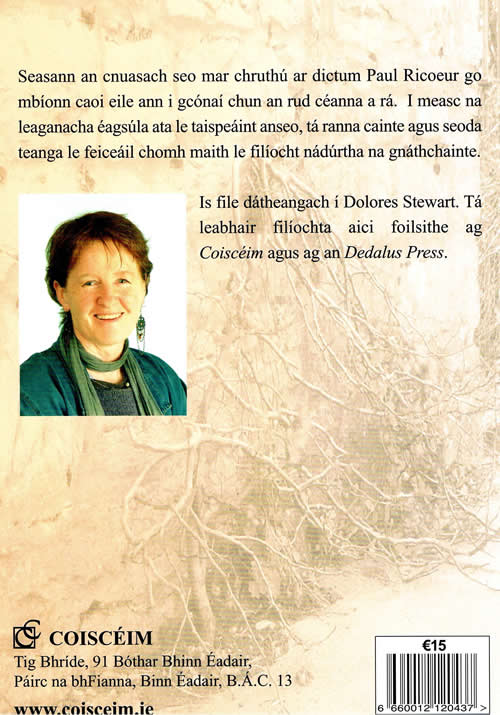 O Fhocal go Focal Delores Stewart Storchiste Focail do Flii Dictionary Lexicon Thesaurus for Gaelic poetry